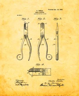 Fruit Clipper Patent Print