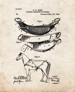 Electric Appliance For Horses Patent Print