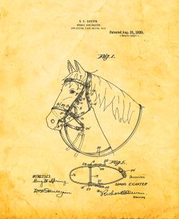 Horse Bridle And Halter Patent Print