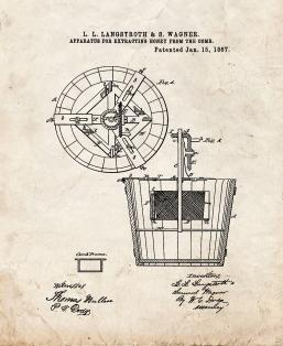Apparatus For Extracting Honey From The Comb Patent Print