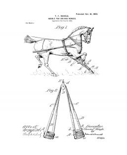 Hobble For Driving-horses Patent Print