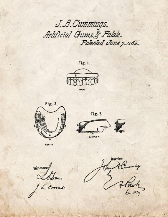 Artificial Gums And Palate Patent Print