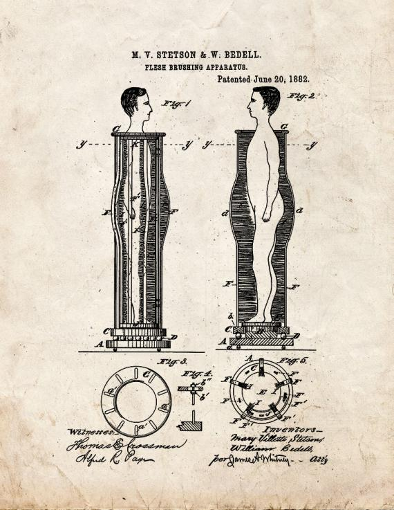 Flesh Brushing Apparatus Patent Print
